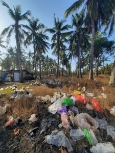 Palm trees surrounded by plastic bags