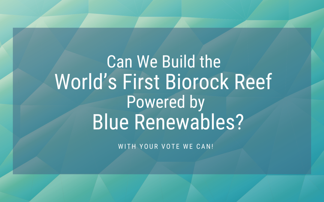 Can we build the world's first Biorock garden powered by blue renewables?
